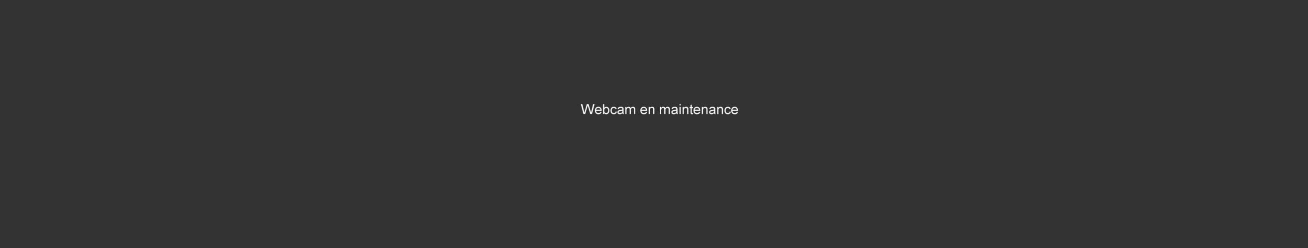 Webcam Saint-François Longchamp