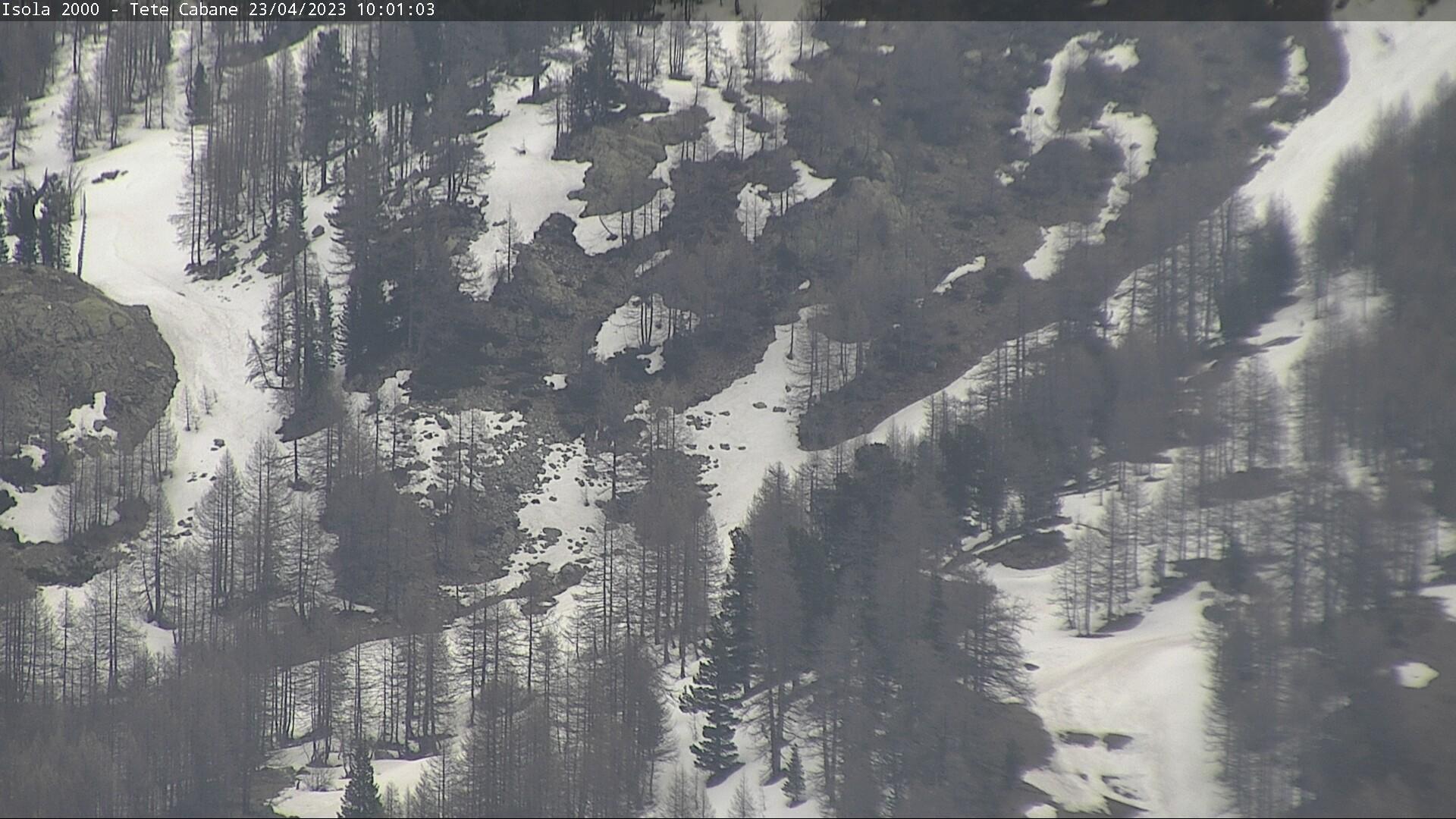 Webkamera Isola 2000